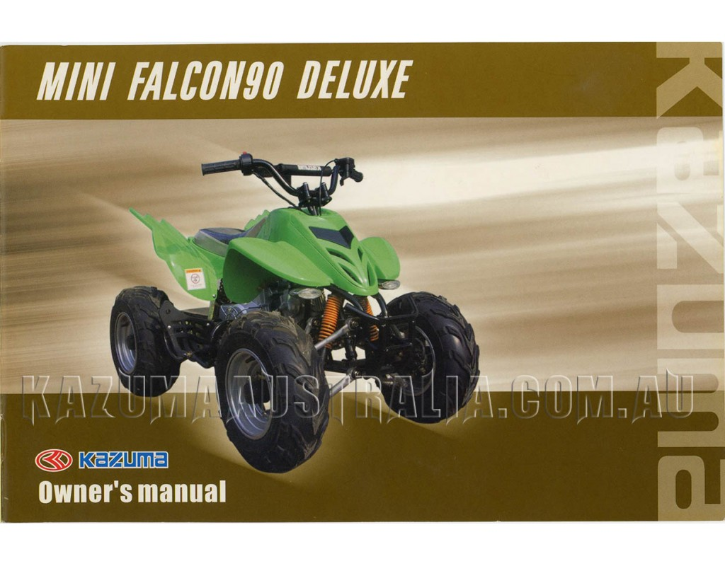 Redcat 150cc Atv Manual Kazuma 150 Wiring Diagram Falcon Enthusiast Diagrams U2022 Rh Rasalibre Co 50cc
